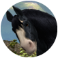 FairUnicorn's Avatar