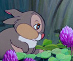 Watch ''Thumper's Breakfast''
